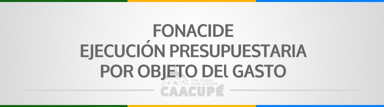 EJECUCIÓN DE GASTOS FONACIDE